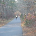 Bicycling the Cape Cod Rail Trail in the autumn